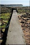 NO5603 : Sewage overflow outlet, Anstruther Wester by Richard Sutcliffe