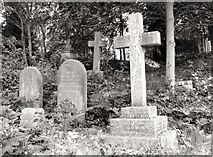 TG2408 : The grave of Mark Knights by Evelyn Simak