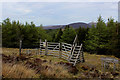 NC9317 : Ladder Stile giving Access to the Path for Kilearnan Hill by Chris Heaton