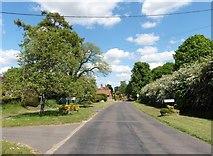 SU7037 : Winchester Road, Chawton by Roger Cornfoot