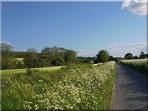 SU2763 : The road to Crofton by Stefan Czapski