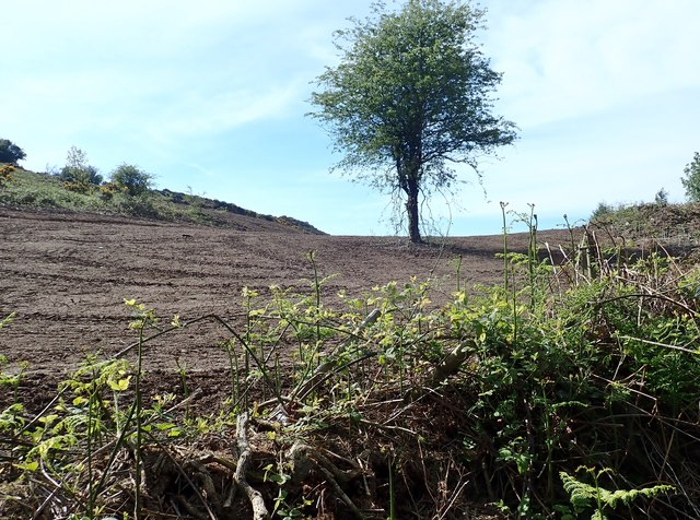 Land reclamation on the western slopes of Slievebrack