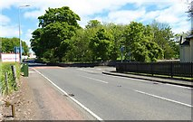 NT3195 : Road to West Wemyss by Bill Kasman