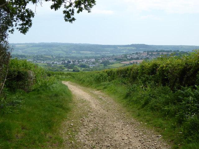 Downhayne Brake Road - a green lane above Colyton