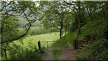 SN7079 : Gate and stile on the path through Cwm Rheidol by John Lucas