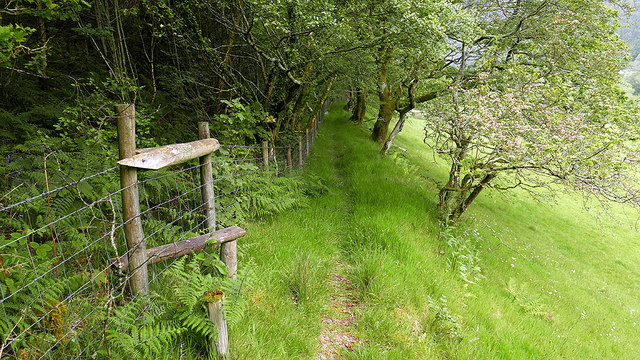 Footpath and stile in Cwm Rheidol