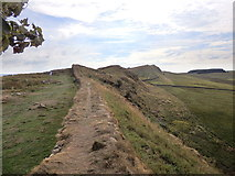 NY7868 : Hadrian's Wall east of Milecastle 37 by Rudi Winter