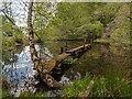 NH6242 : Old Mill Dam by valenta
