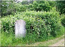 TG2408 : The Hunt Family burial plot by Evelyn Simak