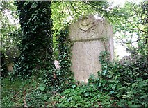 TG2408 : The grave of Josiah Newbegin Bacon by Evelyn Simak