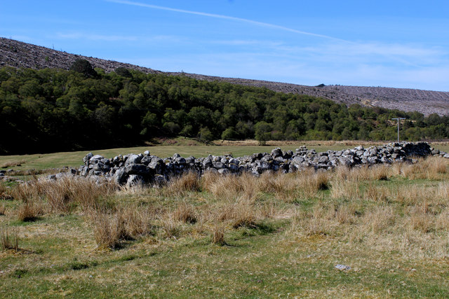 Sheepfold at Upper Suisgill