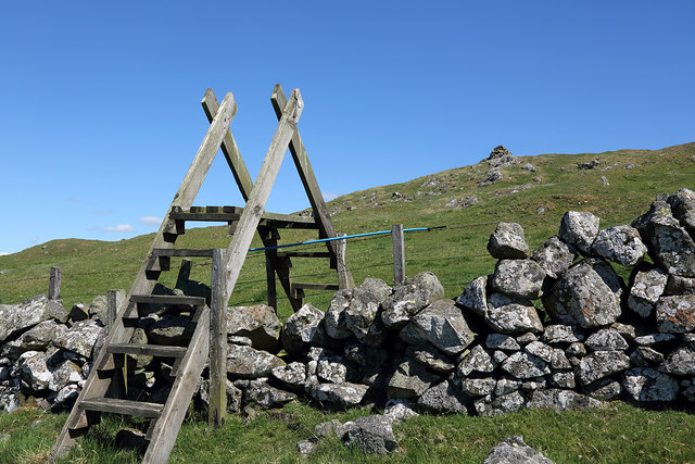 A ladder stile on Bonchester Hill
