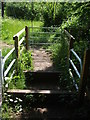 ST6478 : A bridleway with battlements by Neil Owen