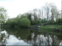SK5907 : Towpath bridge over a drain, near Uxbridge Road allotments by Christine Johnstone