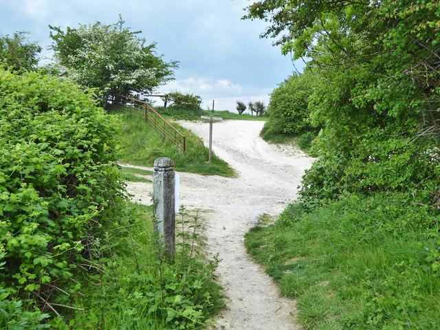 Crossing of bridleways above Rockrose Farm by Robin Webster