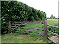 ST6092 : Wooden gate, Featherbed Lane, Oldbury-on-Severn by Jaggery