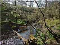 NS4276 : The Overtoun Burn by Lairich Rig