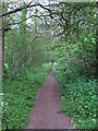 TQ6796 : Bridleway nr Queens Park Country Park, Billericay by Roger Jones