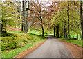 NO1792 : Road on Invercauld estate by Trevor Littlewood
