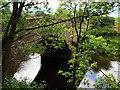 SD4947 : Gubberford Bridge, River Wyre by David Dixon