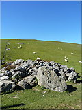 SJ0827 : Northern side of Glan Hafon, above a large clearance cairn by Richard Law