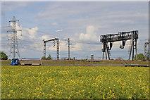 SK1409 : Rape field and railway near Huddlesford in Staffordshire by Roger  Kidd
