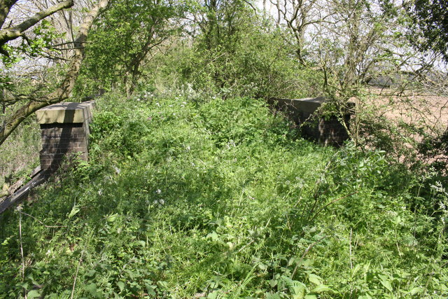 Overgrown track bed of dismantled railway on bridge over stream