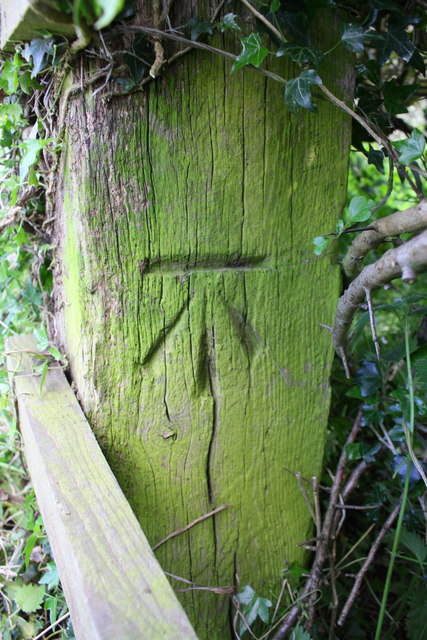 Benchmark on wooden gatepost in roadside hedge east of Wycomb