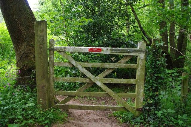 Gate, Dunclent Lane, near Stone, Worcs
