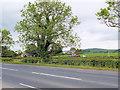 SD4948 : A6 (Preston Lancaster Road) at Woodfold Farm by David Dixon