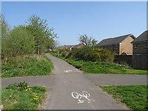 NX9877 : Dumfries to Locharbriggs path by Richard Webb