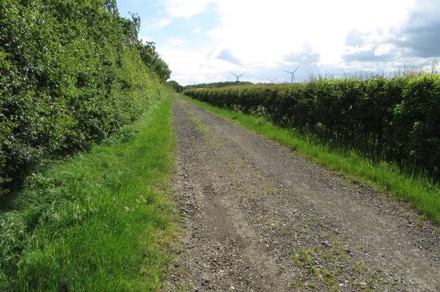 Track towards Brownage Wood