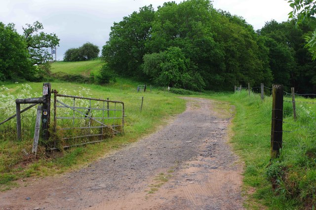 Farm track and public footpath to Harvington, near Stone, Worcs
