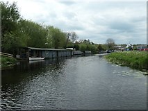 SK5815 : Houseboat and boats moored east of Mountsorrel Lock by Christine Johnstone