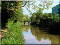 SP4814 : Oxford Canal heading north by Steve Daniels