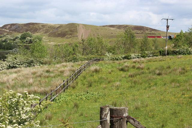 Rough grassland by minor road