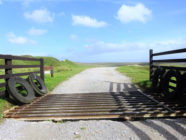 Cattle grid, Yarnbury