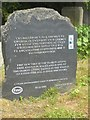 SH8767 : Ancient yew tree commemorative stone at St Digain's Church, Llangernyw by Meirion