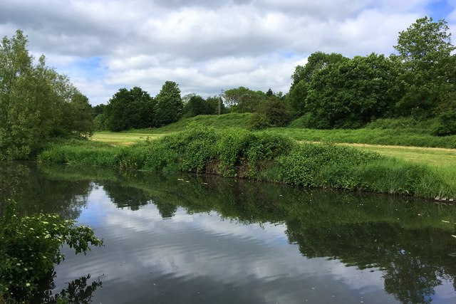 Meadow by the canal