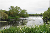 SP2195 : Confluence on the River Tame by Bill Boaden