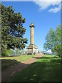 NU1913 : The  Tenantry  Column  erected  in  1816  at  a  cost  of  £2600 by Martin Dawes