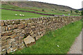SE6198 : Arched sheep creep by Mick Garratt