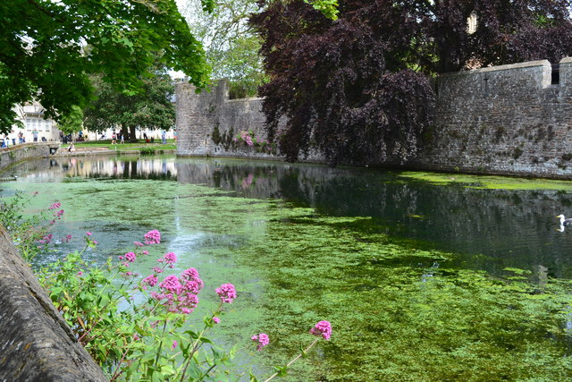 Moat of the Bishop's Palace, Wells