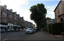 ST5774 : Whiteladies Road, Woolcott Park by David Howard