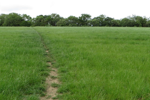 Bridleway towards Colworth