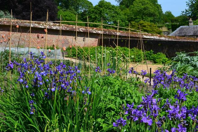 Stourhead: walled garden
