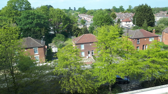 Houses and trees in Burgess Road