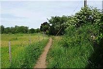 SP3103 : Public footpath, Bampton, Oxon by P L Chadwick