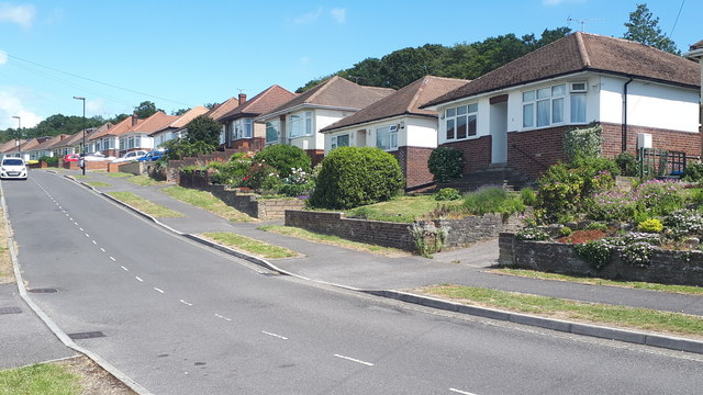 Bungalows in Springford Crescent