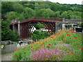 SJ6703 : The Iron Bridge (Ironbridge) by Fabian Musto
